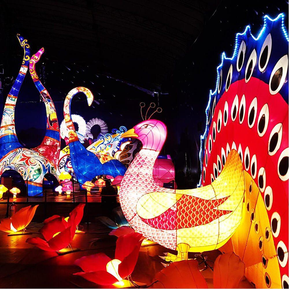 Lễ hội thu hút không chỉ người lớn mà trẻ em trên toàn quốc