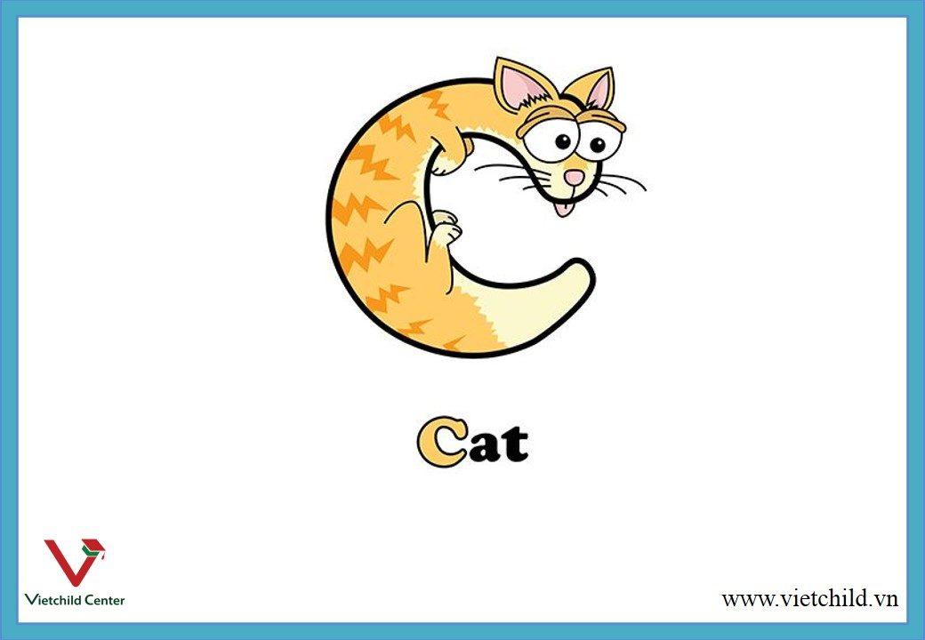 c width=