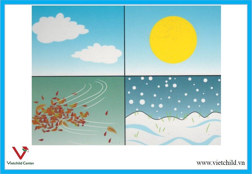 season width=