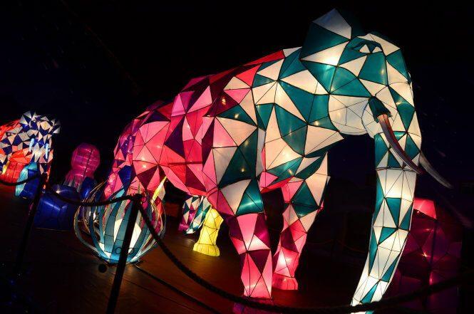 Nhiều mô hình đèn lồng đã hoàn thiện và vô cùng đặc sắc